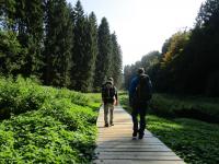 Mullerthal-Trail-Larochette-Müllerthal-09a