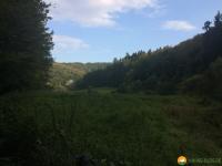 Mullerthal-Trail-Larochette-Müllerthal-15