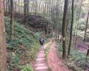 Mullerthal-Trail-Larochette-Müllerthal-03