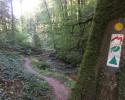 Mullerthal-Trail-Larochette-Müllerthal-14