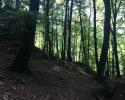 Mullerthal-Trail-Larochette-Müllerthal-08