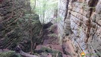 Mullerthal-Trail-Muellerthal-Echternach-18