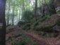 Mullerthal-Trail-Muellerthal-Echternach-03