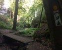 Mullerthal-Trail-Muellerthal-Echternach-15