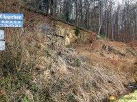 Naturschutzgebiet_Holthauser_Bach_20