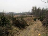 Naturschutzgebiet_Holthauser_Bach_12