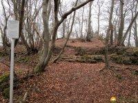 Naturschutzgebiet_Holthauser_Bach_23