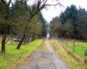 Naturschutzgebiet_Holthauser_Bach_02