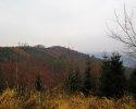 Naturschutzgebiet_Holthauser_Bach_05