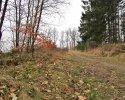 Naturschutzgebiet_Holthauser_Bach_09