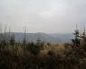 Naturschutzgebiet_Holthauser_Bach_10