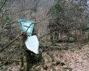 Naturschutzgebiet_Holthauser_Bach_17