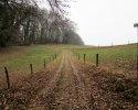 Naturschutzgebiet_Holthauser_Bach_21
