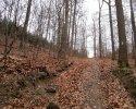 Naturschutzgebiet_Holthauser_Bach_04