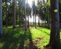 Nord_Ostsee_Wanderweg_Albersdorf_Elsdorf_02