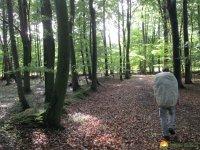 Nord_Ostsee_Wanderweg_Elsdorf_Westensee_01