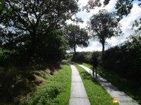 Nord_Ostsee_Wanderweg_Meldorf_Albersdorf_08