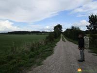 Nord_Ostsee_Wanderweg_Meldorf_Albersdorf_15