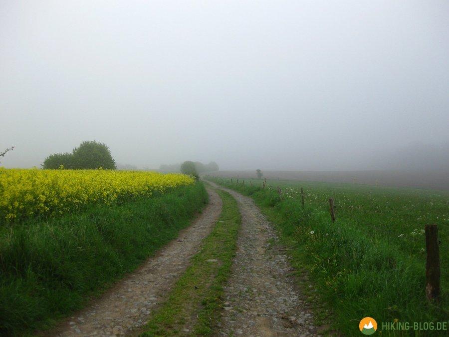 Rund-um-Breckerfeld-04