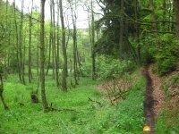 Rund-um-Breckerfeld-13
