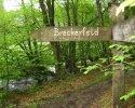 Rund-um-Breckerfeld-15