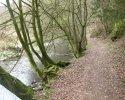 sauerland-waldroute16