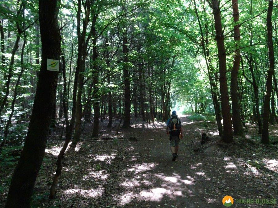 Spessartbogen-Etappe1-02