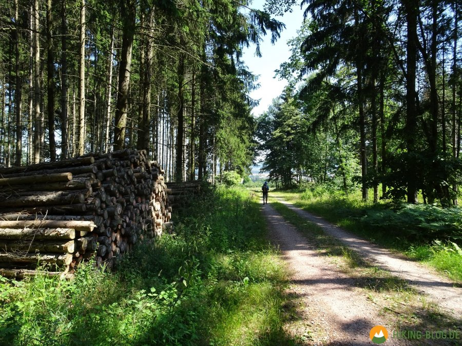 Spessartbogen-Etappe1-04