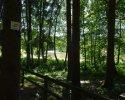 Spessartbogen-Etappe4-07