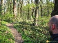 Trailrunning_03