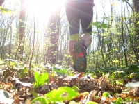 Trailrunning_09