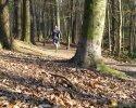 Trailrunning_01