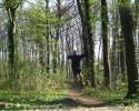 Trailrunning_07