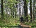 Trailrunning_08