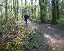 Trailrunning_11