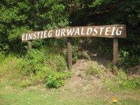 auf-dem-urwaldsteig_hemfurth_nieder-werbe15