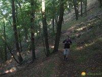 auf-dem-urwaldsteig_hemfurth_nieder-werbe02