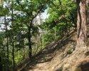 auf-dem-urwaldsteig_hemfurth_nieder-werbe07