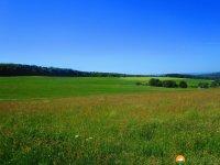 WaellerTour-Brexbachschluchtweg-07