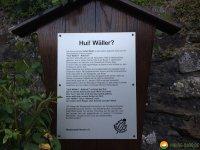 WaellerTour-Brexbachschluchtweg-24
