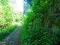 WaellerTour-Brexbachschluchtweg-14