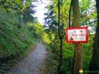 Walderlebniszentrum_Ziegelwies_11