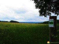 Wandermarathon-WesterWaldsteig-18