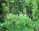 Wandermarathon-WesterWaldsteig-10