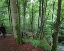 Wandermarathon-WesterWaldsteig-14