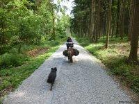 Wandern_mit_Pony_03