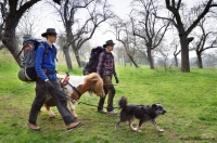 Wandern_mit_Pony_07