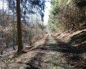 Wildnis-Trail-Tag3-2