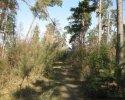 Wildnis-Trail-Tag4-6