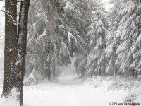 naturpark_ebbegebirge_5141